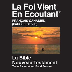 Новый завет на французском языке - 2000 Parole de Vie (Canadian) Version Audio Drama New Testament mp3